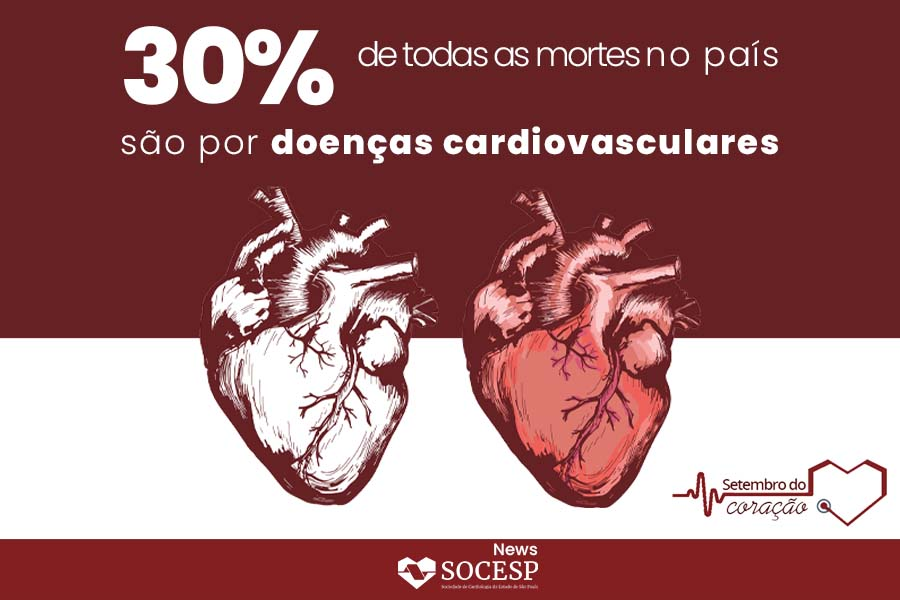 Imagem da notícia 30 POR CENTO DE TODAS AS MORTES NO PAÍS SÃO POR DOENÇAS CARDIOVASCULARES