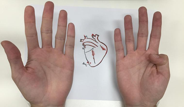 Imagem da notícia 9 verdades e 1 mentira sobre doenças cardiovasculares